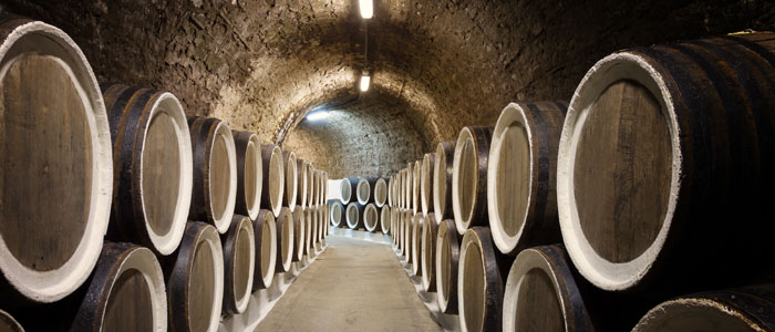 Wine barrels in a vineyard cellar